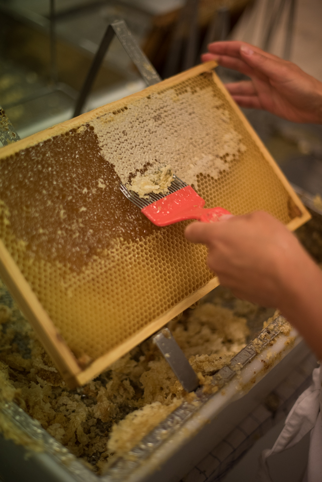Werde Magazin - Kopenhagen - Bienen