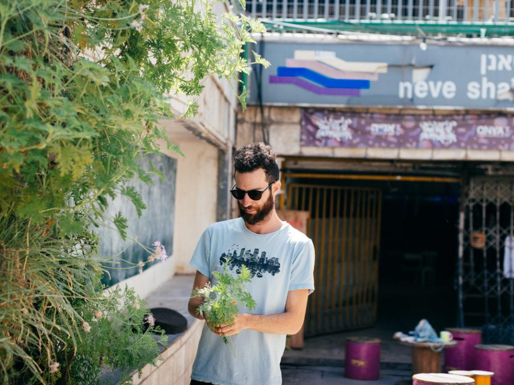 Werde Magazin - Tel Aviv
