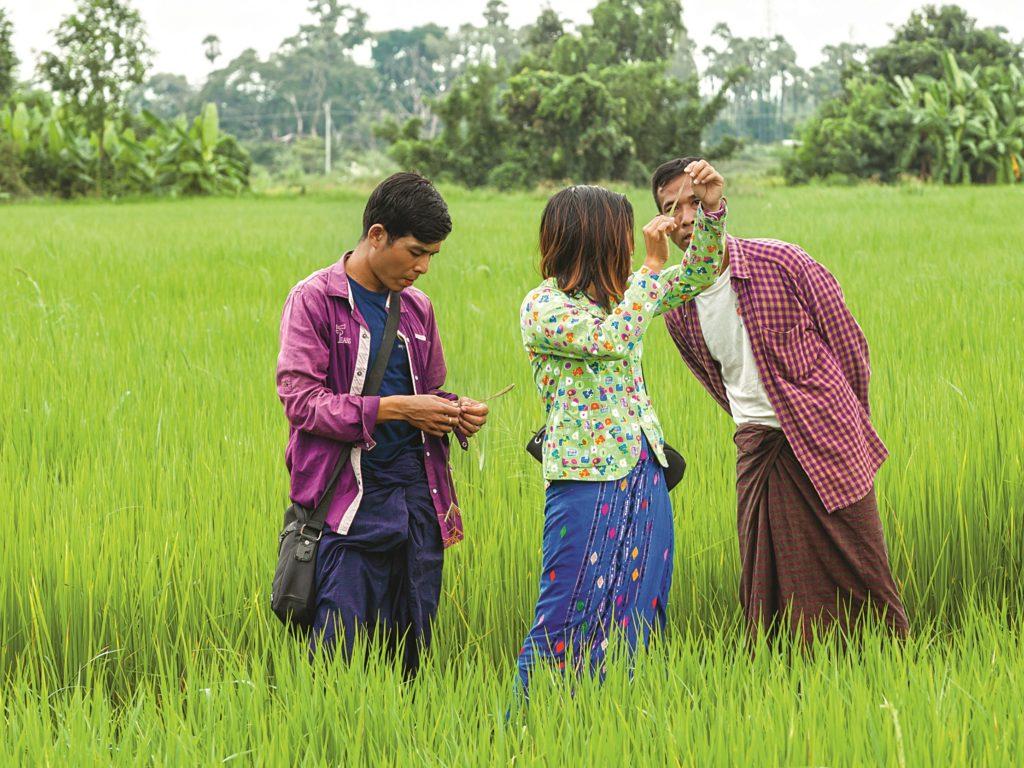 Werde Magazin - Glossar der guten Zukunft - Proximity Design Myanmar