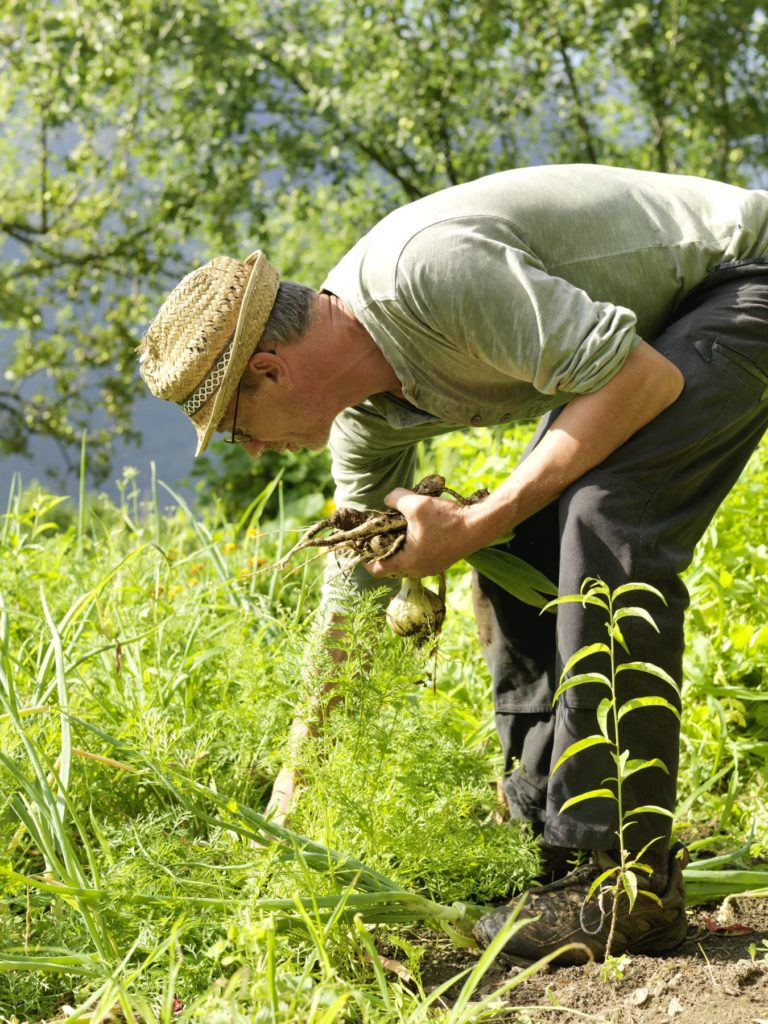 Der Vater der Familie Lanfranchi bei der Gartenarbeit