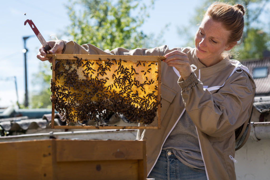 Werde Magazin - Mit Bienen leben
