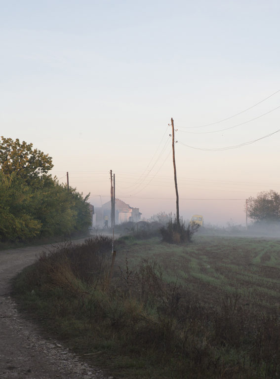 Iva Farm, Serbien Blick in Richtung Strasse