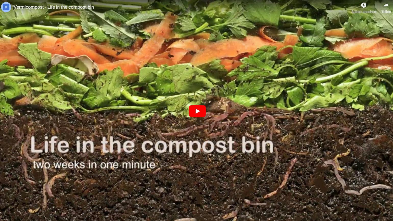 Wie Kompost entsteht