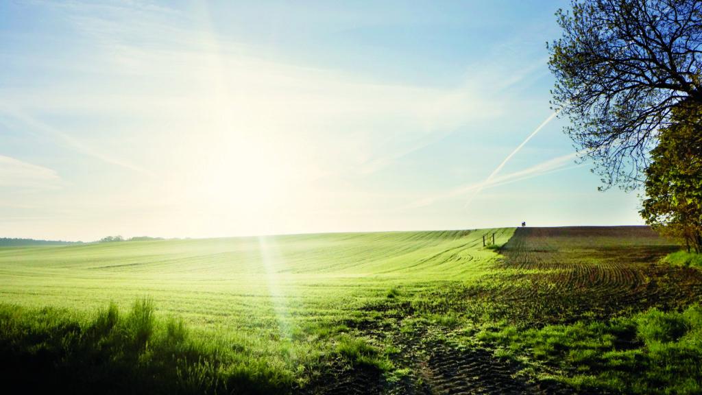 Die Genossenschaft BioBoden kauft Ackerflächen auf, die sie dann langfristig an Landwirte verpachten.