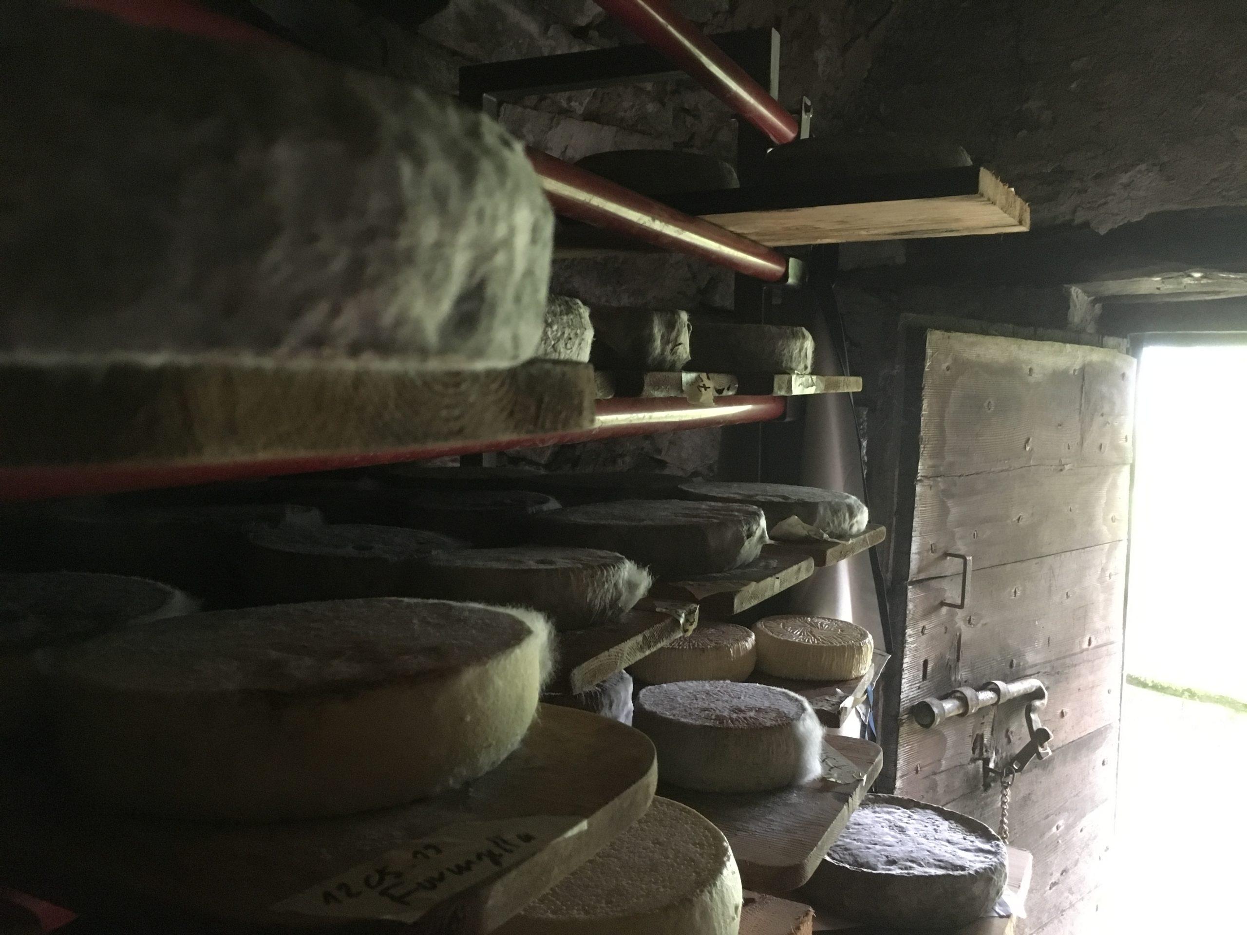 In einem ursprünglichen Grotti reifen verschiedene Käsesorten