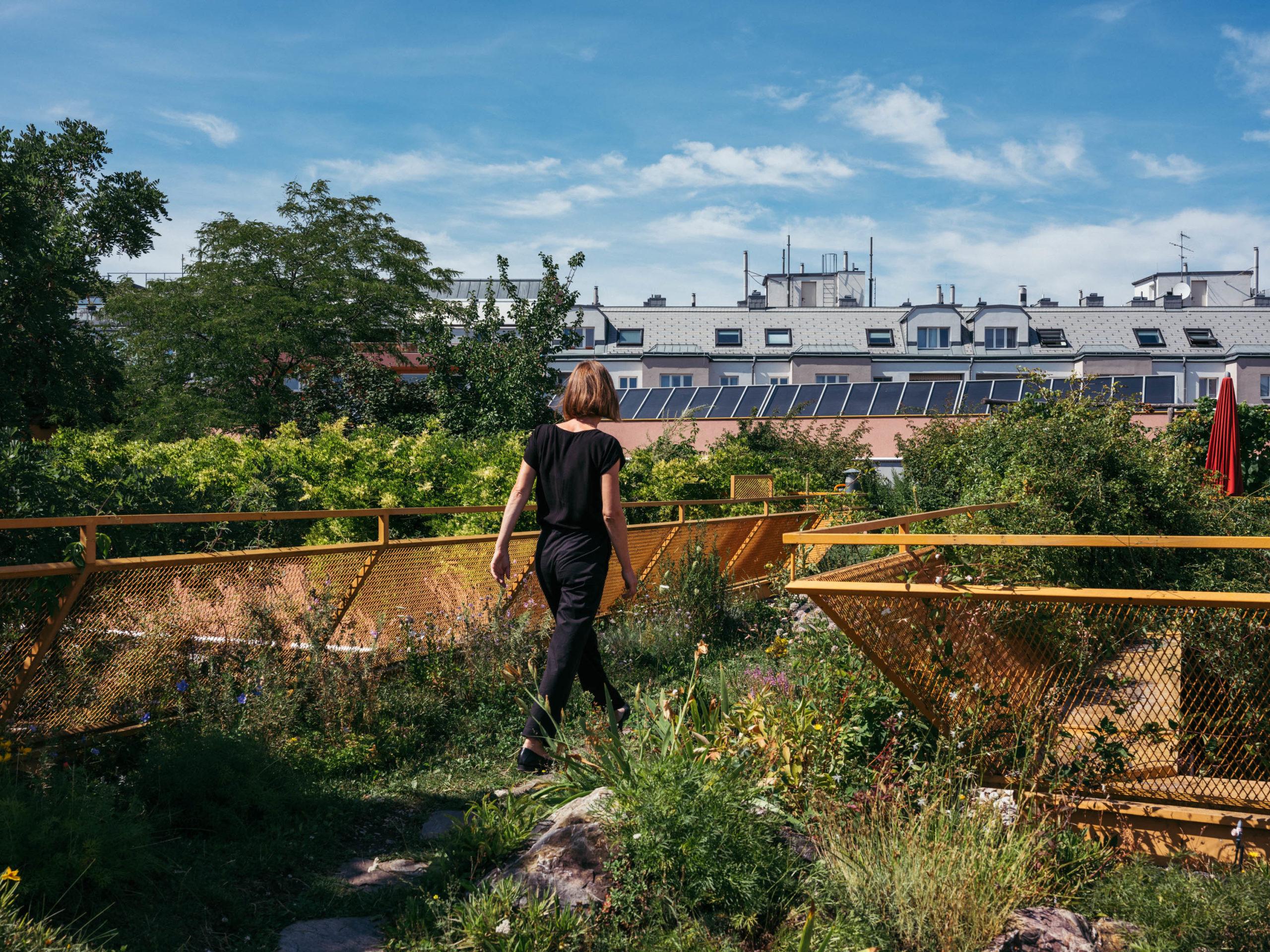 Eine Frau spaziert über eine bepflanzte Dachterrasse