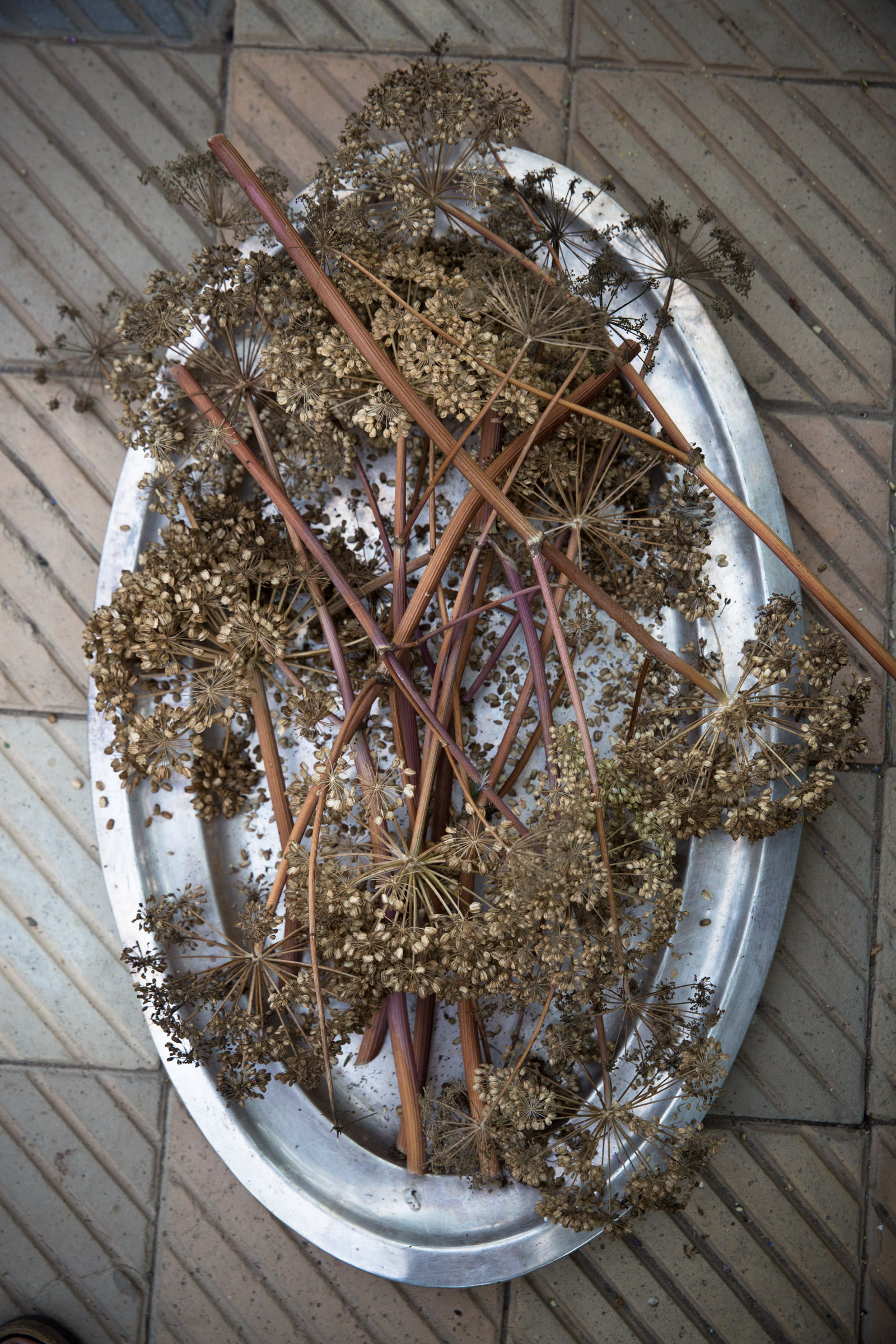 Getrocknete Pflanzen auf einem Silbertablett