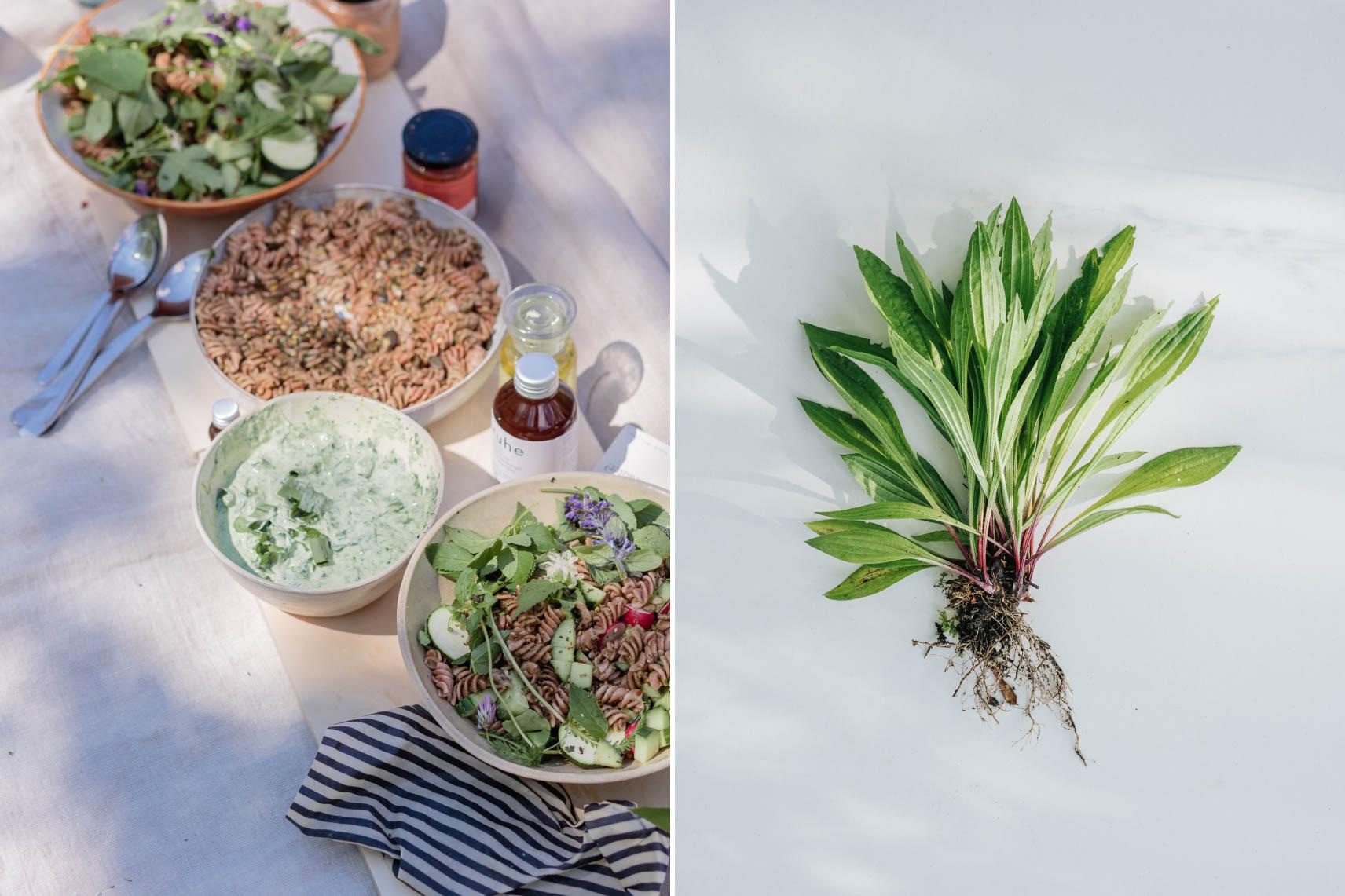 Verschiedene Teller mit Gerichten aus Wildkräutern und Wildpflanzen