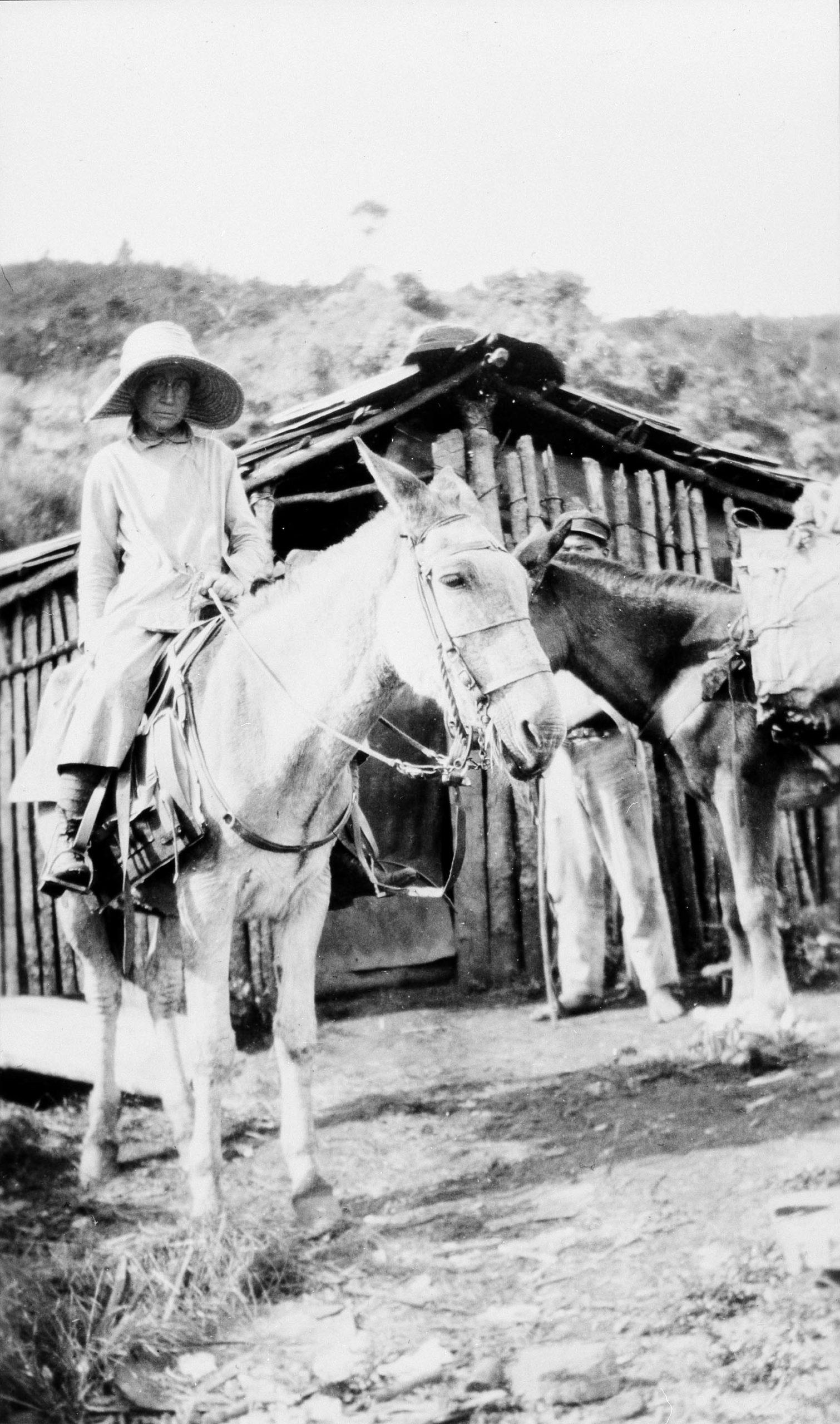 Mary Agnes Chase auf einem Pferd schwarz-weis