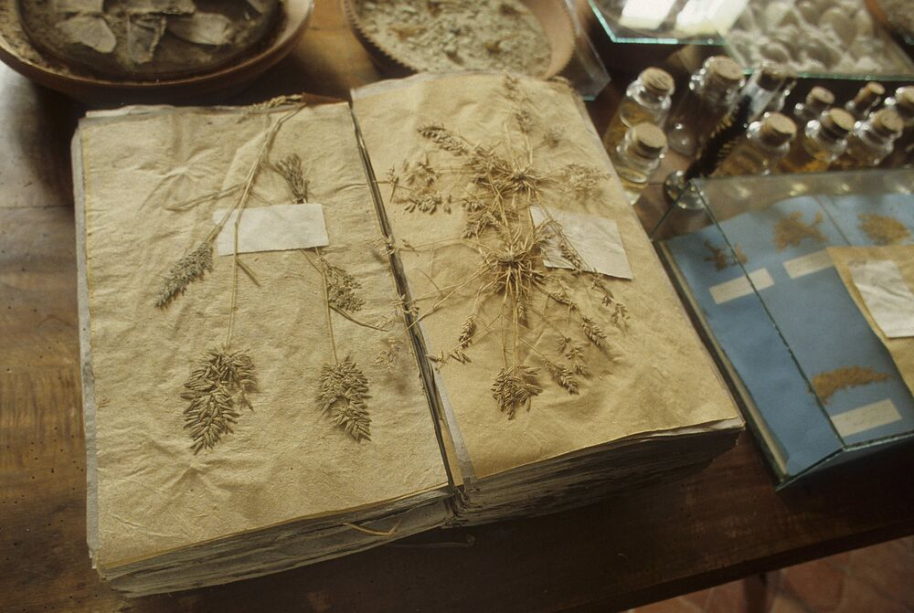 Herbier de Jean Henri Fabre Harmas Serignan du Comtat Vaucluse Provence Alpes Cote d Azur