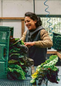 Gut Haidehof Regenerative Landwirtschaft
