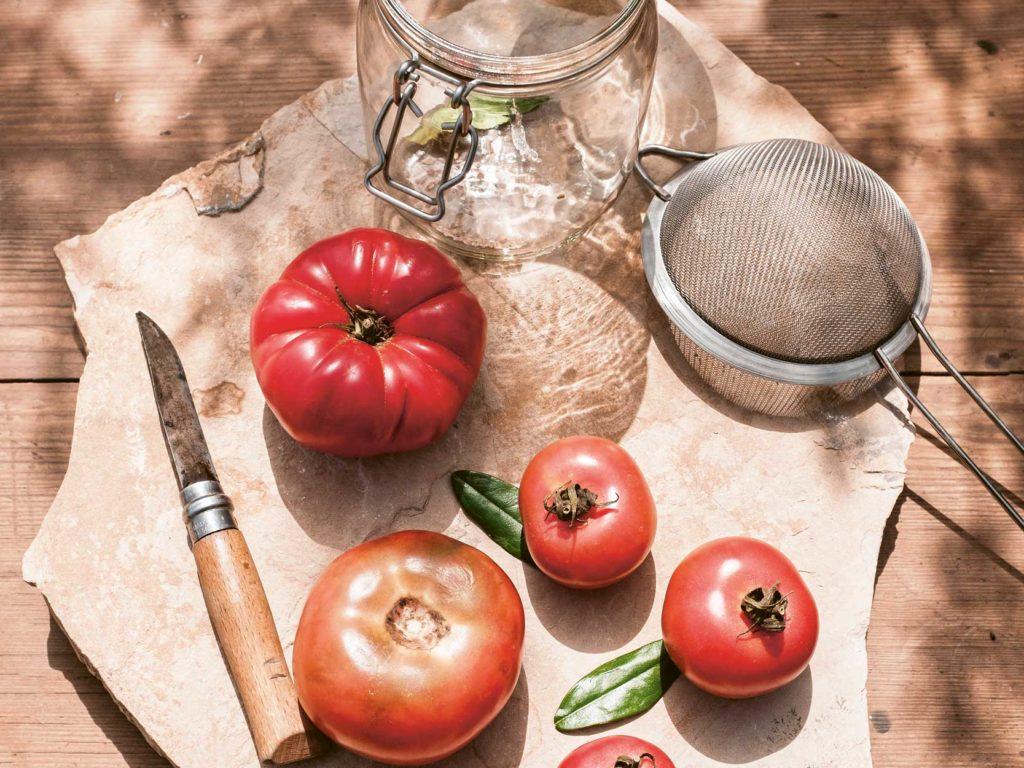Tomaten Saatgut Selbst gemacht