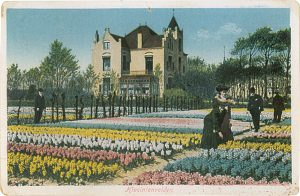 alte Postkarte Haus